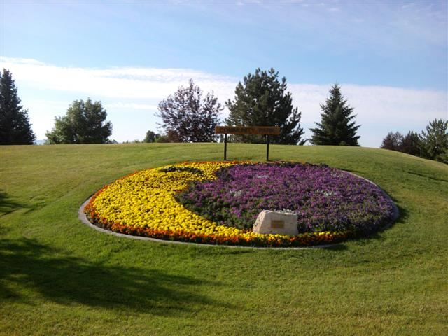 A large round flower bed with flowers planted in it in the shape of a moon.
